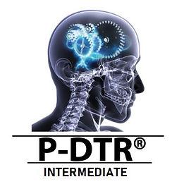 p-dtr intermediate.jpg
