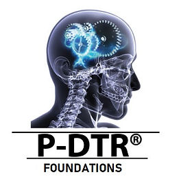 p-dtr foundations.jpg