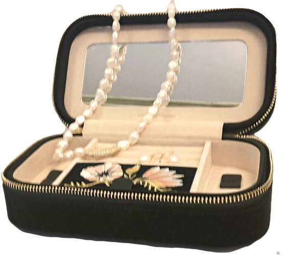 Traveling Jewelry Box with Jewelry!