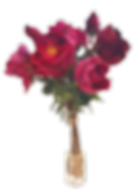 20200423_180435_resized_edited_edited.pn