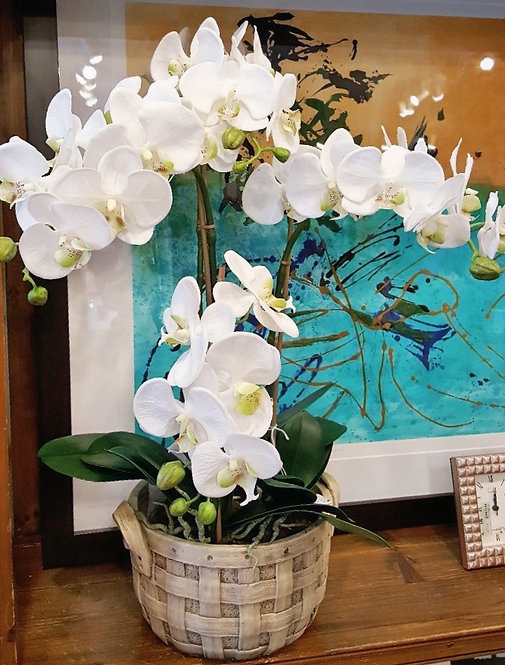 Phalaenopsis Silk Orchid Drop In with Tobacco Planter