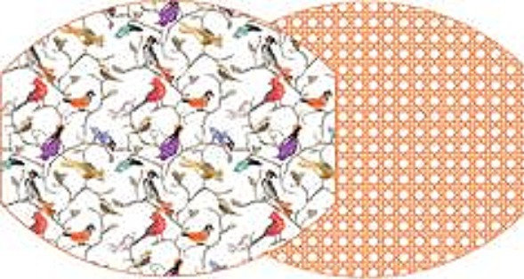 Audubon and Cane Reversible Board Placemat Set of 4