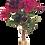 Thumbnail: Cabbage Rose Bouquet