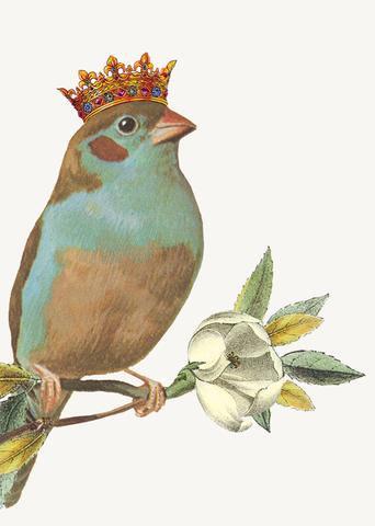 Gift Insert Card - Bird