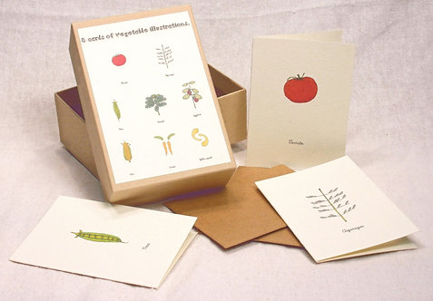 Box of Mini Vegetable Cards