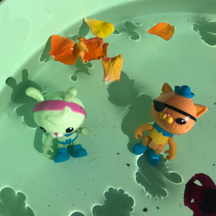 Toys in water