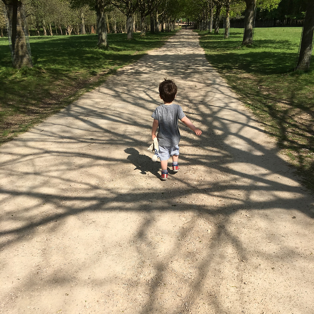 Boy walking down paths with shadows