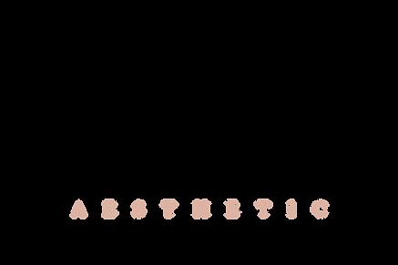 selfie aesth final logo - no background.