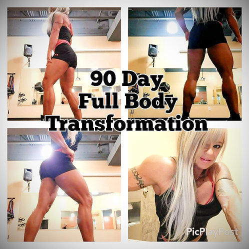 90 Day Full Body Transformation
