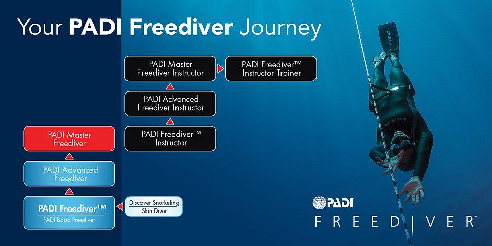 Freediver flowchart.jpg