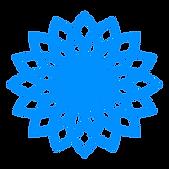 logo 0091ff.png