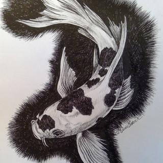 Koi fish in ink