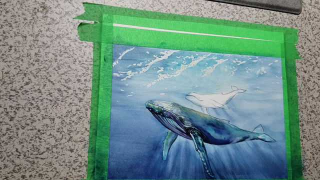 Finishing the baby humpback whale