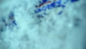 Captura de pantalla (1271).png