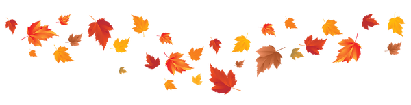 fall-leaves-png-transparent-24.png
