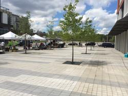 Regent Park: Linear Park