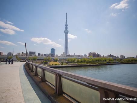 【まちあるき】歩く国際協力!隅田川さんぽを開催しました