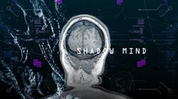 Shadow Mind