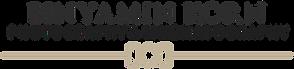 BINYAMIN Logo Black.png