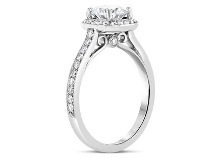 Copy of Engagement Ring 8_b0.JPG