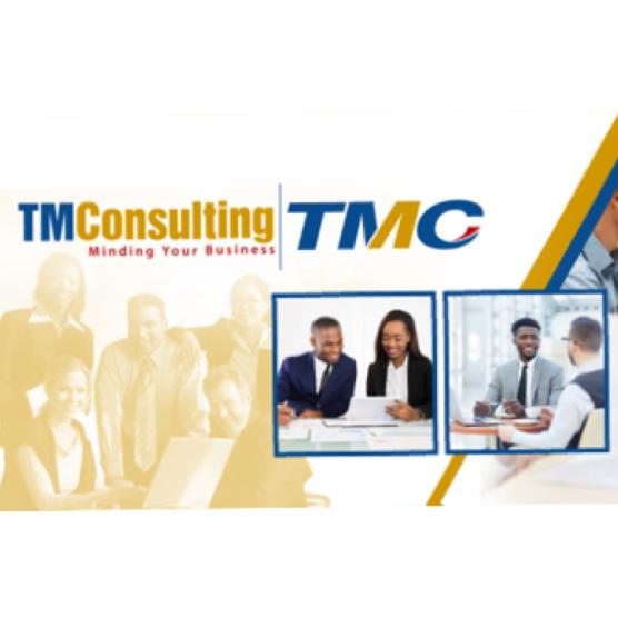 Initial Business Consultation