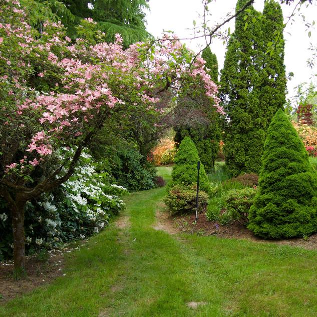 The Perennial Path