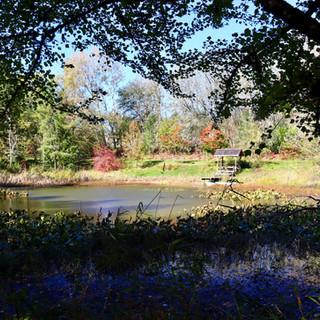 The Upper Pond