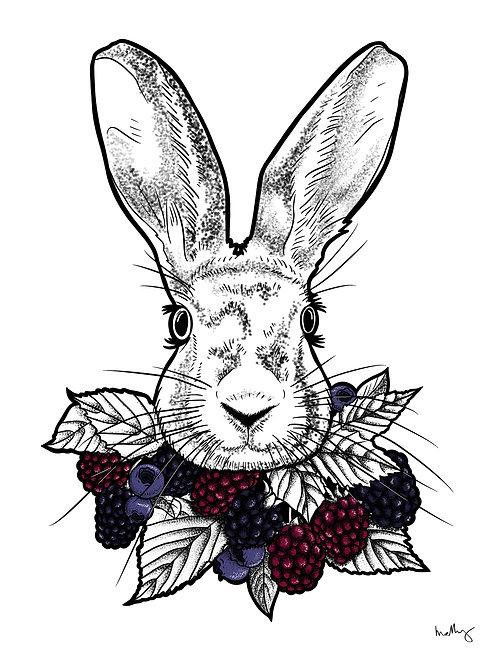 Rabbit Collar