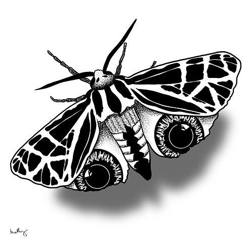 Butterfl-eyeball