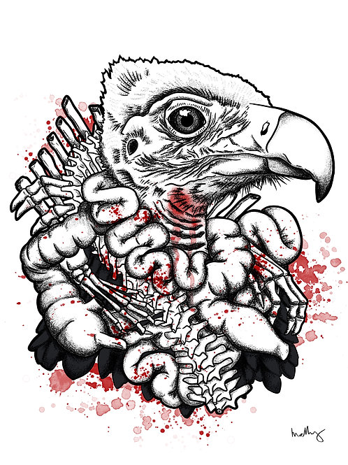 Vulture Collar