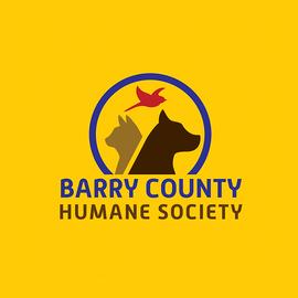 BCHS Logo Design