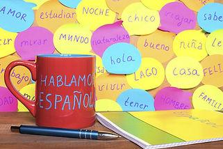 cours d'espagnol à la carte, tout niveau, méthode et profil