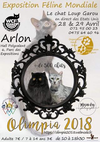 Kyra et Nala tenteront de devenir Championne du Monde à l'expo Mondiale d'Arlon ces 28 et 29