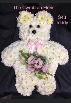 Teddy Funeral