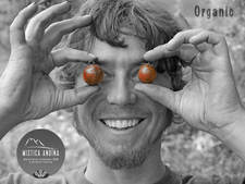 Organic2.jpg