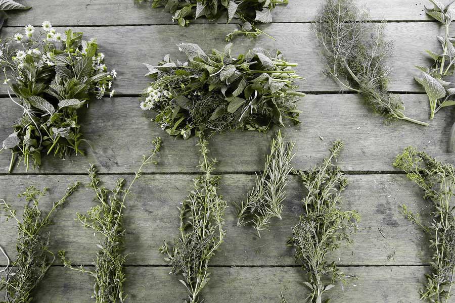 Veggies-1-Herbs