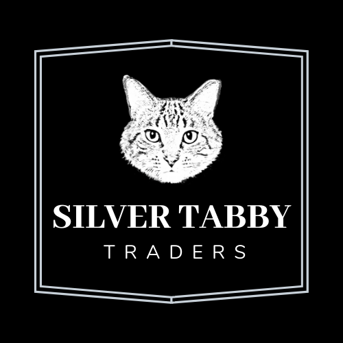 silver tabby 5.png