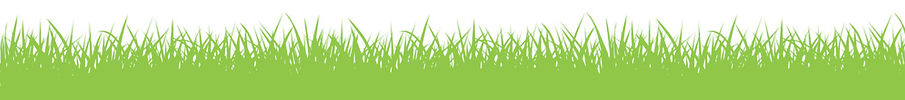GRASS DIVIDER  90c748.jpg