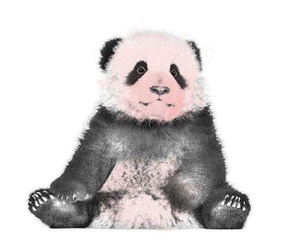 Artistic-Print-Panda-Sketch-Watercolor.j