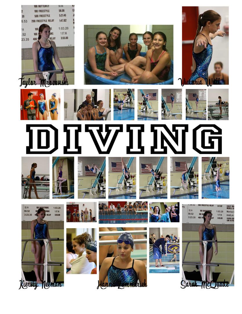 LHHS Diving Team Photos