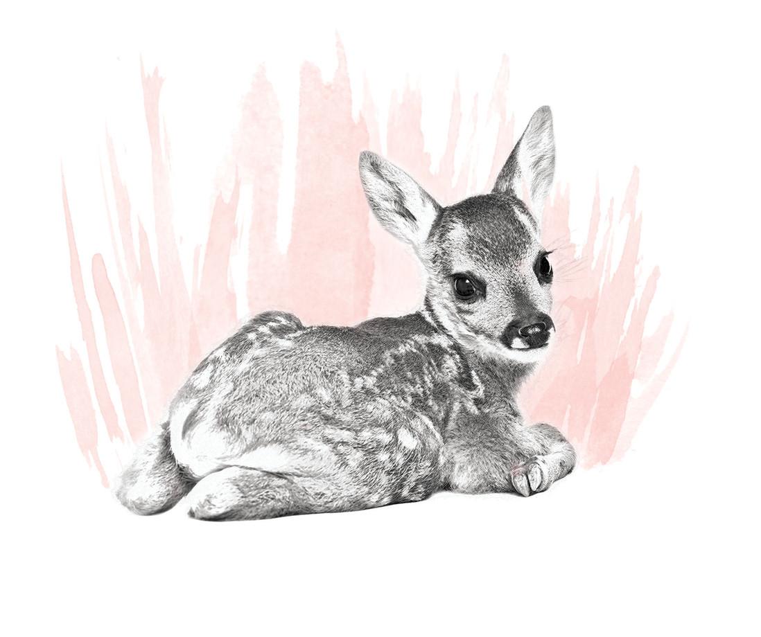 Artistic-Print-Deer-Sketch-Watercolor.jp