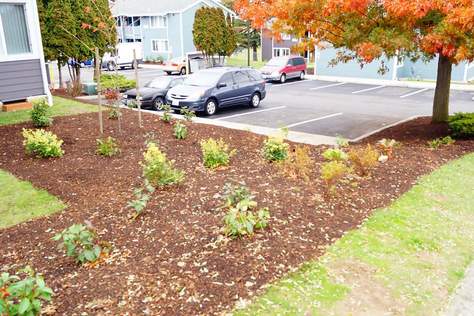 Everett Housing Landscaping
