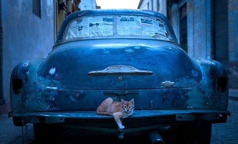 Cuba-Photographer-07_edited_edited.jpg