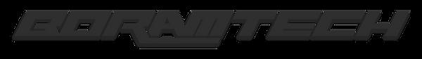 Boramtech Logo.png