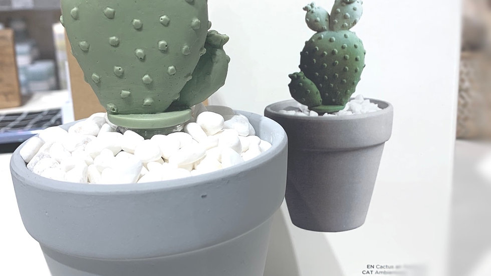 Diffuseur cactus