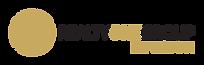 Envision Logo2.png