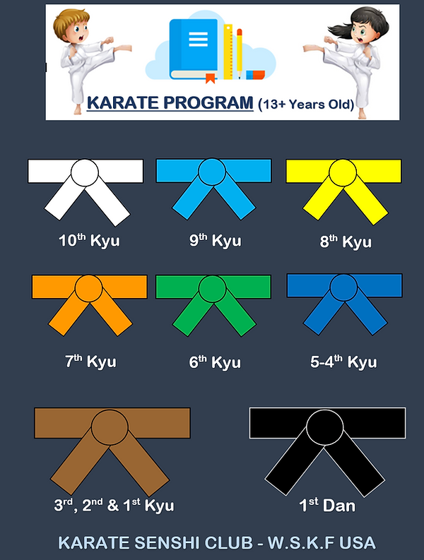 Karate Program 13+.PNG