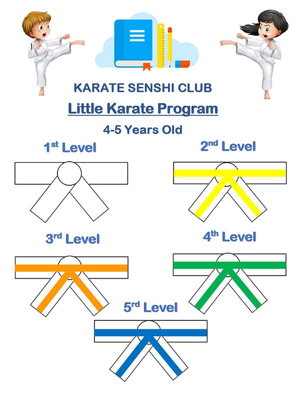 Little karate program photo.PNG