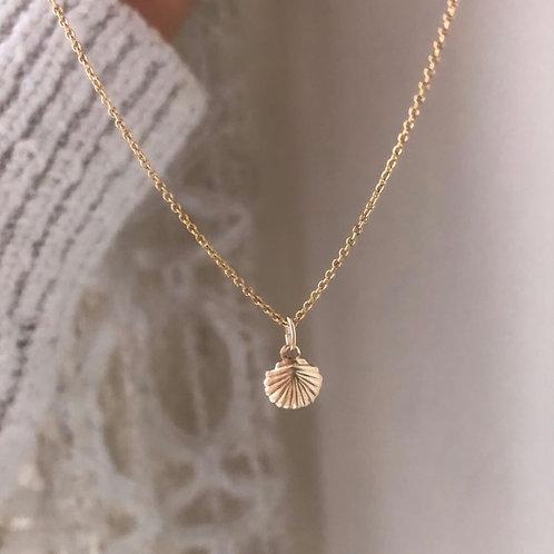 Moana - Shell Necklace Small