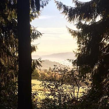 Herfst in Winterberg